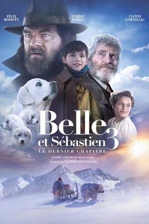 Belle Ve Sebastian Bitmeyen Dostluk